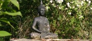 Meditieren im Frühbuddhismus