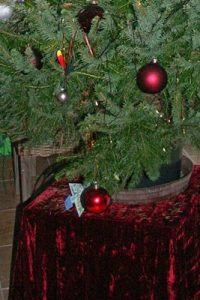 Wanderurlaub mit Weihnachtsbaum