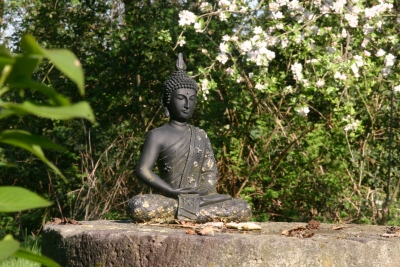 Meditieren wie Buddha