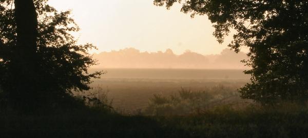 Morgenstund Web im Mund